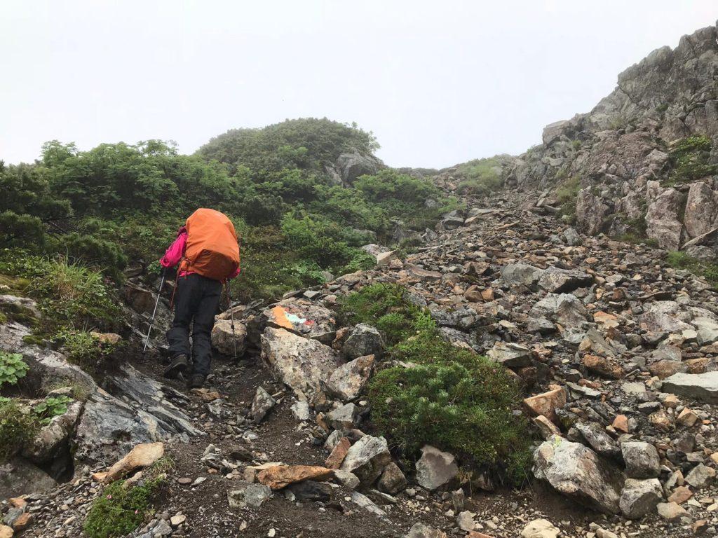 赤石岳までの登山道