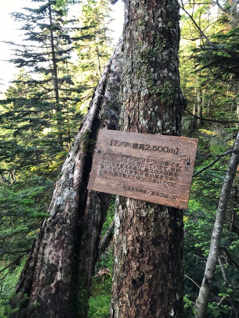 椹島までの下山の標識