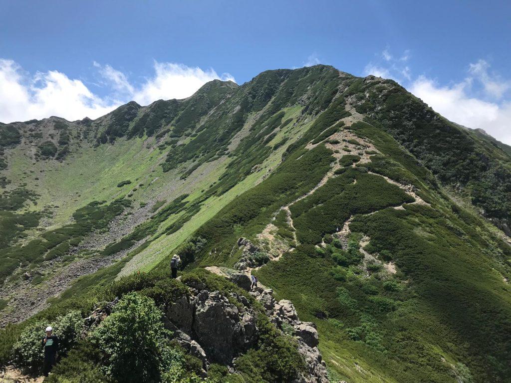 仙丈ヶ岳 登山道