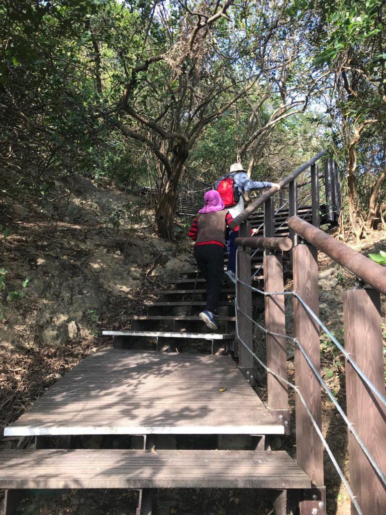 最初はこんな階段が続きます