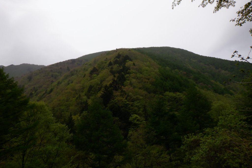 恵那山 5月